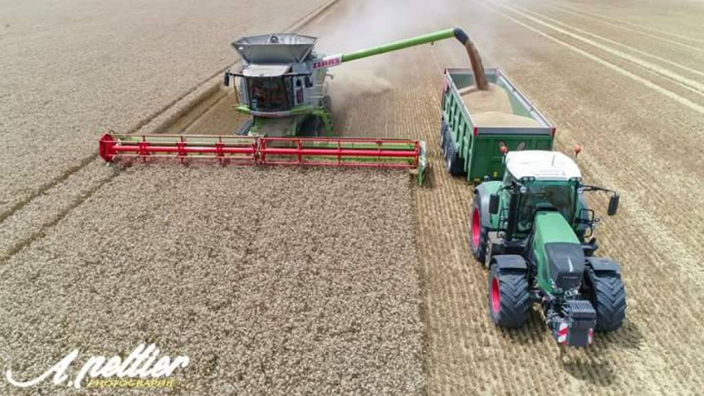 Récolte de blé dans la Vienne (86) près de Cissé