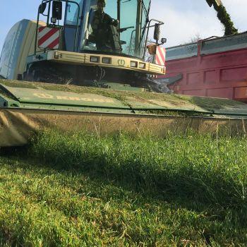 Ensileuse d'herbe coupe directe Krone BIGX