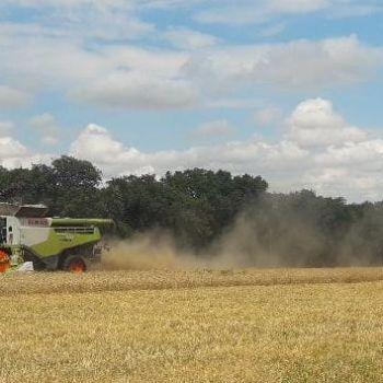 Récolte céréales 18130 Dun sur Auron