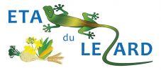 ETA du Lezard